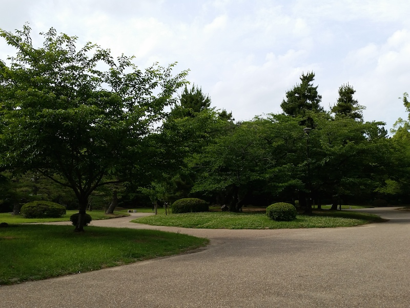 HDR未使用で木々を撮影