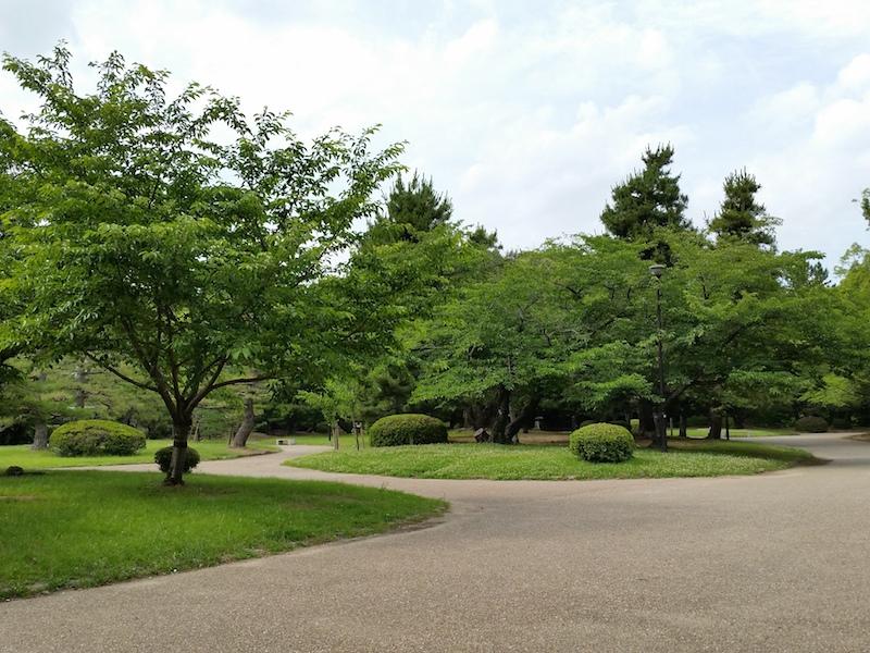 HDR使用で木々を撮影