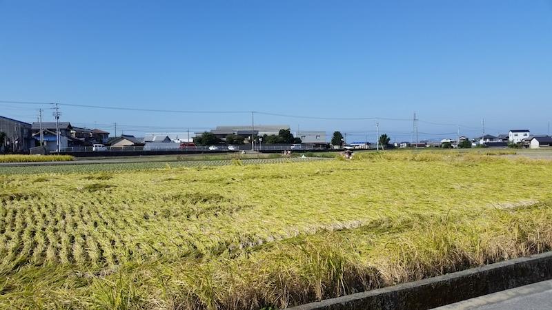 田舎の昼の風景