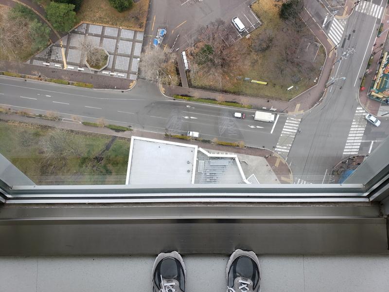 五稜郭タワーからの展望